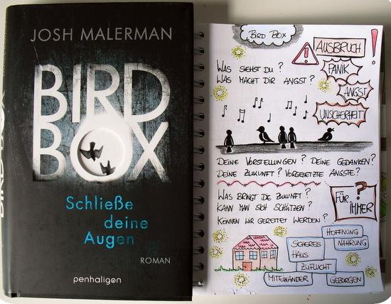 bird-box-sketch