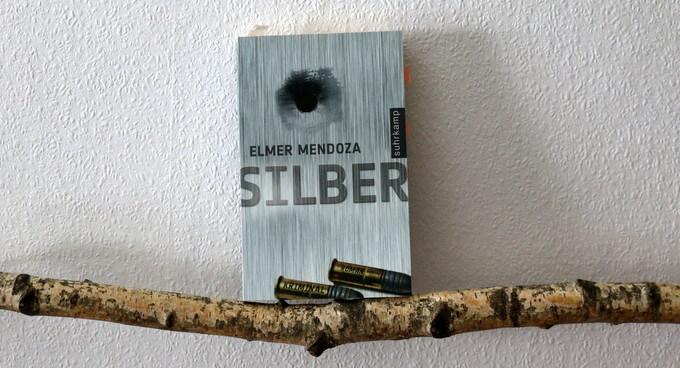 silber, buchkritik, crime, mendoza