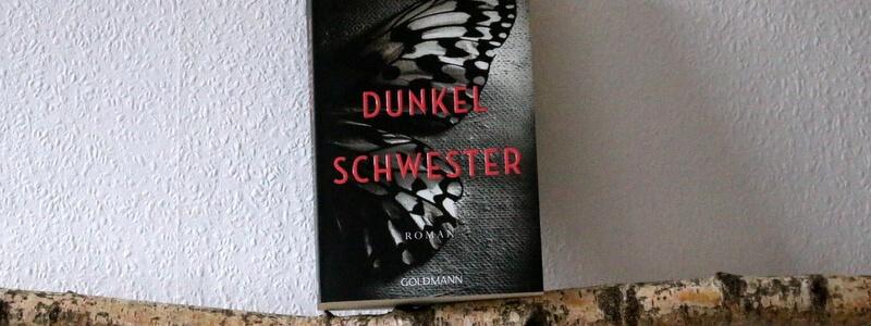 dunkelschwester, crime, goldmann, buchkritik