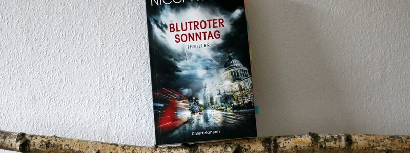 Blutroter Sonntag, nicci french, buchkritik, crime, london