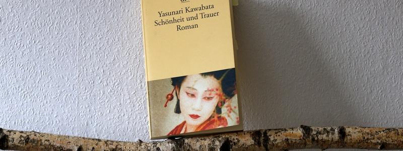 schönheit und trauer, japan, japan special, buchkritik, dtv, yasunari kawabata