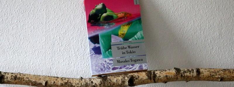 trübe wasser in tokio, crime, togawa, buchkritik, japan special