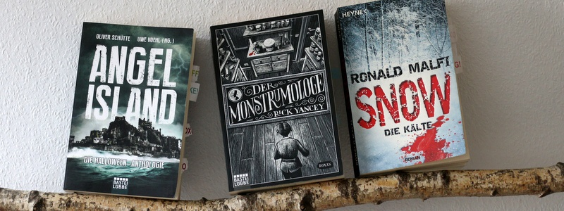 drei Bücher, drei meinungen, buchkritik