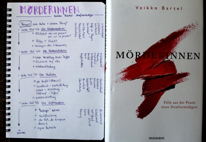 mörderinnen, buchkritik, crime, mosaik verlag
