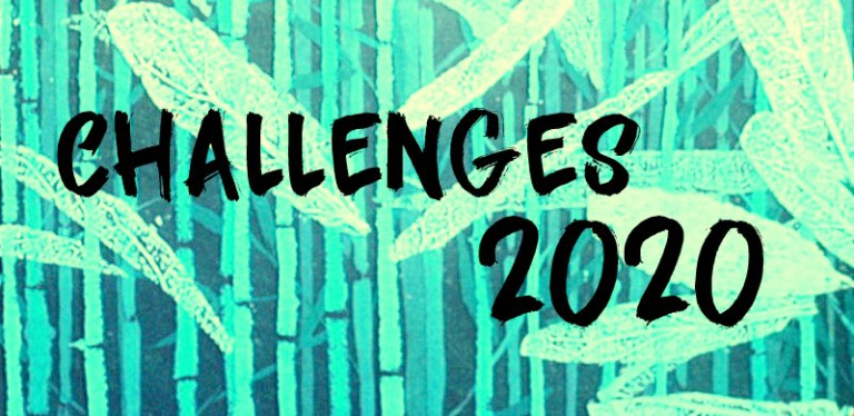 "|Aktion| ""Challenges 2020"""