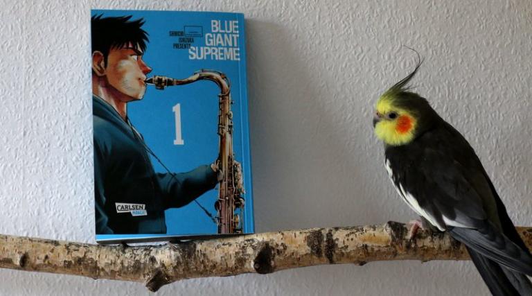 "|Musik| ""Blue Giant Supreme"""