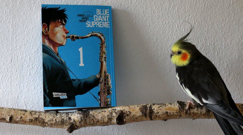 " Musik  ""Blue Giant Supreme"""