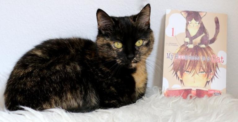 "|Manga| ""My roommate is a cat"""