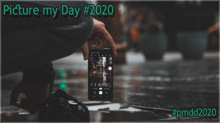 "|Aktion| ""Picture My Day"" #pmdd2020"