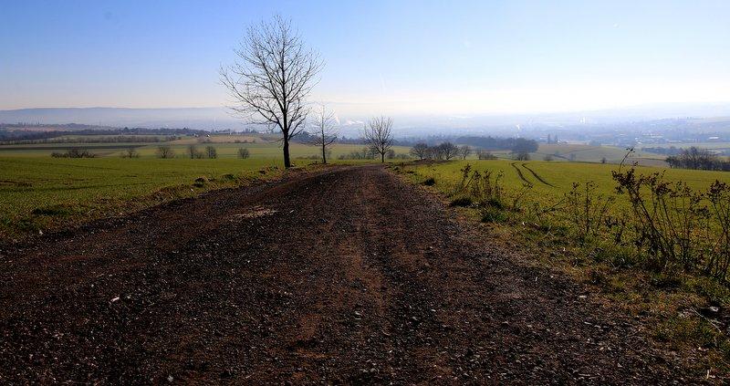 unterwegs, Feldweg bei Sonneschein, Fotografie