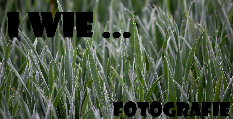 """ Fotografie  """"I wie …"""""""