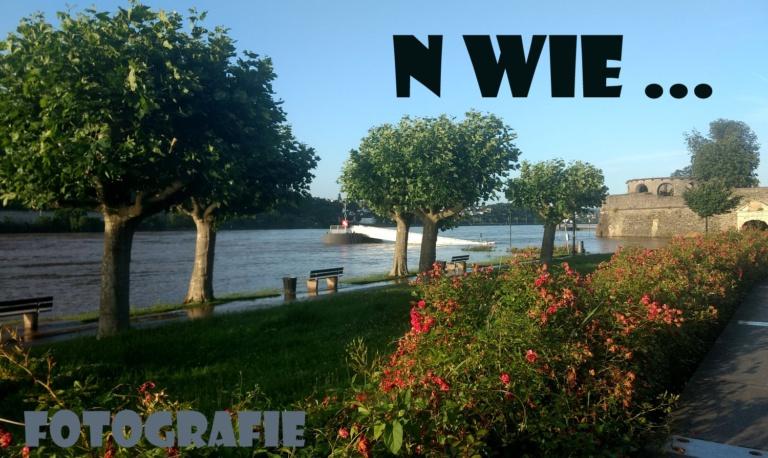 "|Fotografie| ""N wie …"""