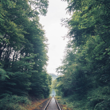 The-Trailway
